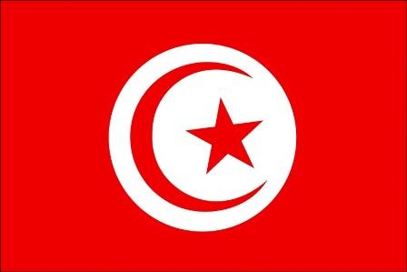 وزارة الدفاع التونسية: وفاة عسكري تونسي أصيب بانفجار لغم غرب البلاد