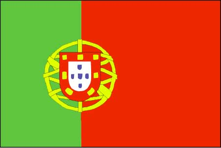 تسعة عشرة قتيلا والعديد من الجرحى جراء حريق غابات في البرتغال