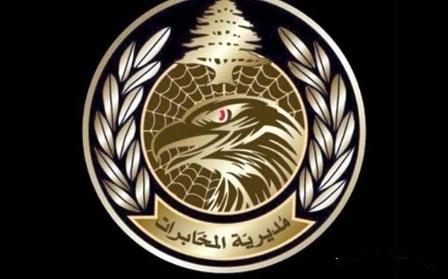 مخابرات الجيش تسلمت متهما من القوة المشتركة في عين الحلوة