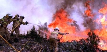 ارتفاع حصيلة الحرائق في البرتغال وإسبانيا الى 45 قتيلا