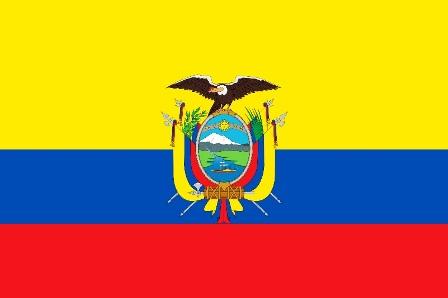 ارتفاع حصيلة وباء انفلونزا اتش 1 ان 1 في الاكوادور الى 66 قتيلا