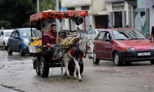 بعد أونروا: إغلاق USAID في فلسطين