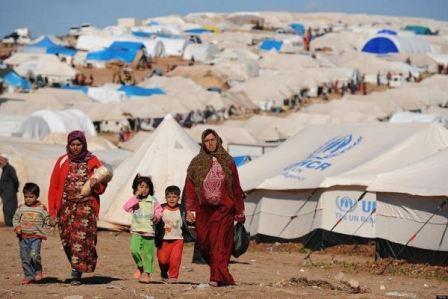 مفوضية اللاجئين لـ