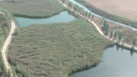مسلسل التعديات على نهر الليطاني... بدأته الدولة منذ عقود