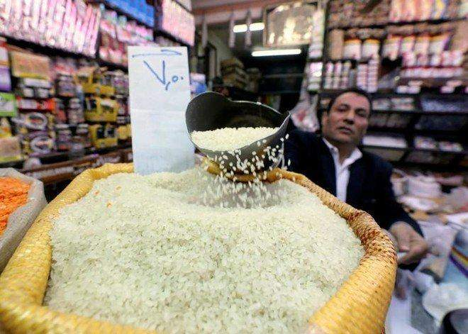 مصر تحقق الاكتفاء الذاتي من الأرز في 2020 بعد إنتاج قياسي