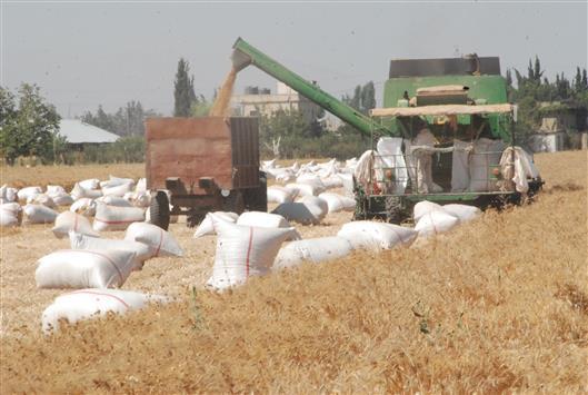 المزارعون يلوّحون بالتحرك باتجاه السرايا الحكومية