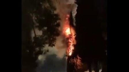رويترز: اندلاع حريق في مجمع المسجد الأقصى بالقدس وقناة تلفزيونية إسرائيلية تقول إنه حريق في شجرة