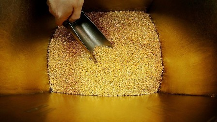 روسيا تواجه الدولار بالذهب