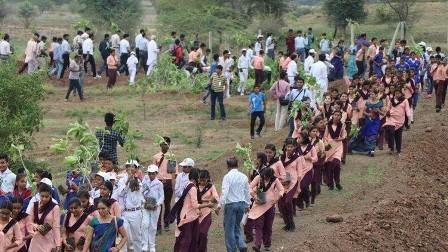 الهند تزرع 66 مليون شجرة في 12 ساعة فقط!