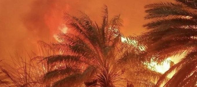 حريق هائل في منطقة الجوف السعودية