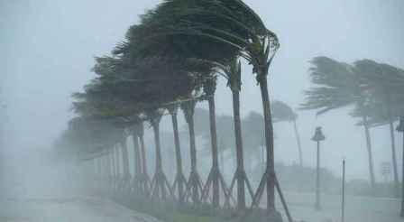 سقوط قتيل في فلوريدا جراء الإعصار مايكل