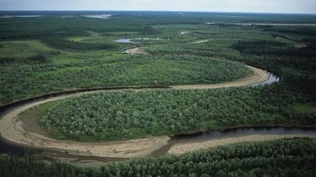 كيف سيؤثر الاحترار العالمي في مناخ سيبيريا؟