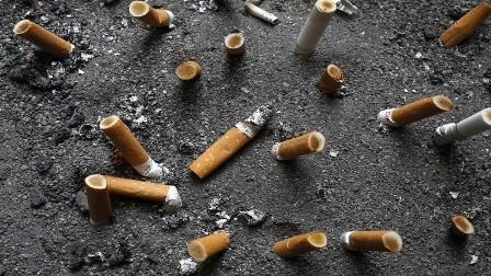 كشف خطر السجائر للبشرية جمعاء