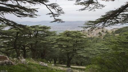 لبنان يبني مختبرا فلكيا في موطن جبران
