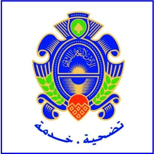 الامن العام جنوبا أوقف 10 عمال مصريين وسحب اوراق 15 آخرين