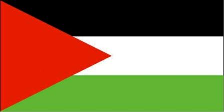 فصائل العمل الفلسطيني في صور تنفي المشاركة في اعمال الشغب: ما يجري شأن داخلي لبناني