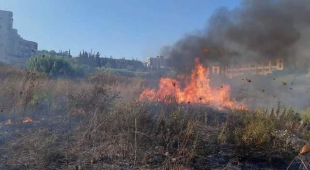 إخماد حريق أعشاب يابسة في عين الدلب وآخر شي بقصب ونفايات في صيدا