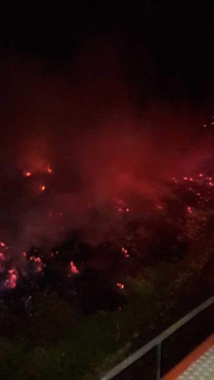 شرطة الهند:مقتل 9 اشخاص بحرائق غابات بولاية تاميل نادو الهندية