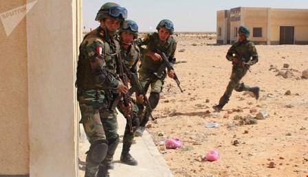 شهداء للجيش المصري خلال عمليّة في سيناء وخسائر في صفوف التكفيريين