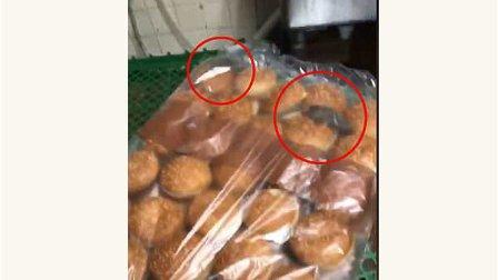 بالفيديو- قوارض داخل كيس كعك الهمبرغر في مطعم للوجبات السريعة