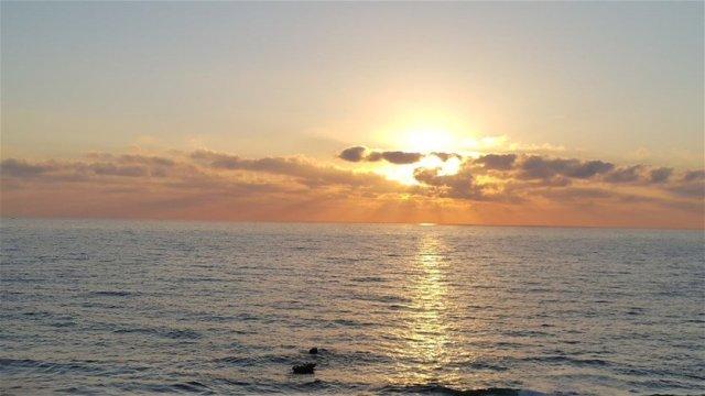 بالصور- مشهد صادم على الشاطئ...