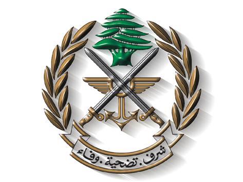 في عيد الجيش: حماك الله من أهل السياسة!