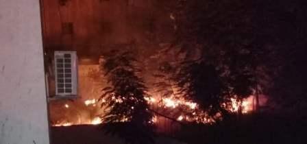 إخماد حريق أشجار وهشير في نزلة صيدون