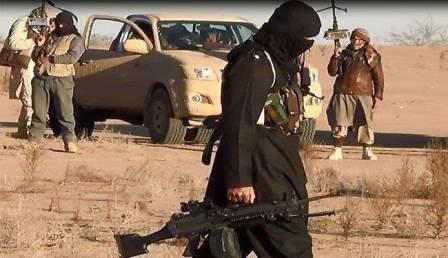 حالات فرار بصفوف داعش باتجاه مرطيبا بعد سيطرة الجيش على ضليل أم الجماعة