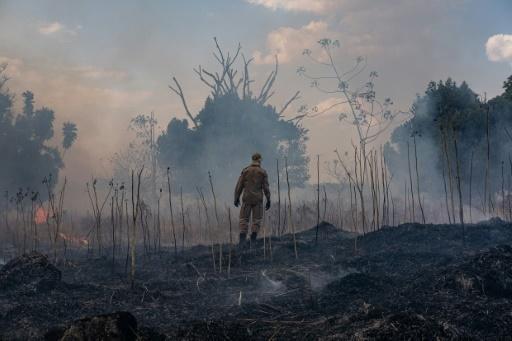 الحرائق ما زالت مستمرة في البرازيل خصوصا في غابات الأمازون