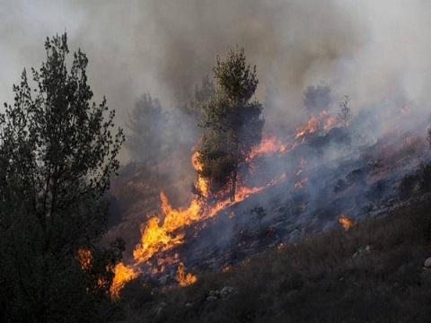 إخماد حريق طاول حقل قمح في بلدة عدلون