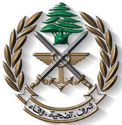 الجيش اللبناني فجر قنبلة من مخلفات جيش العدو في بسطرة