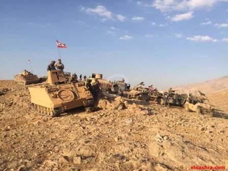 الجيش استعاد مرتفعات ضليل أم الجماعة وعزل مجموعات داعش بمرطيبا