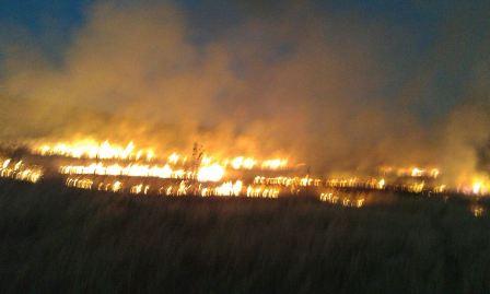 حريق كبير في خراج ميس الجبل وانفجار ألغام
