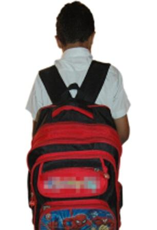 نبيل حرب: لحل مشكلة وزن الحقيبة المدرسية واعتماد الحلول العلمية