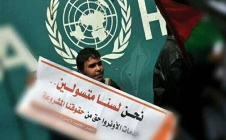 استنفار لبناني - فلسطيني لاستيعاب تداعيات تقليص خدمات الأونروا