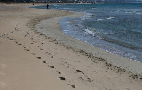 ائتلاف لحماية الشاطئ اللبناني: درب النضال طويل