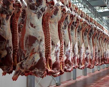 أربعة وثلاثين  ألف وفية بالسرطان: فتشوا عن اللحوم