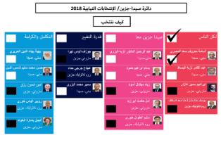 كيف ننتخب/ دائرة صيدا جزين/ الانتخابات النيابية 2018