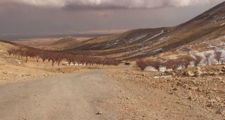معارك المنظمات الإرهابية في الجرود إلى تفاقم.. ماذا عن مخيمات النزوح؟