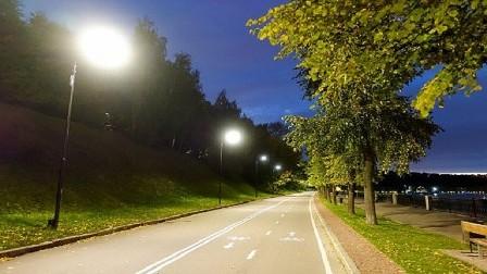 أضواء الشوارع تسرق النوم من الأشجار