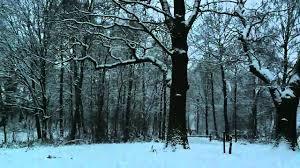 فيروز - رجعت الشتوية