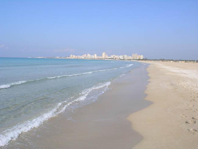 الحركة البيئية تدين التعديات على محمية شاطئ صور الطبيعية